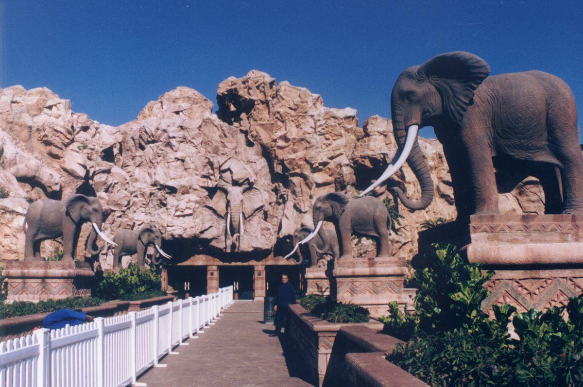 2001 | Αποστολή στη Νότιο Αφρική